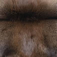 Бобр канадский натуральный нестриженый