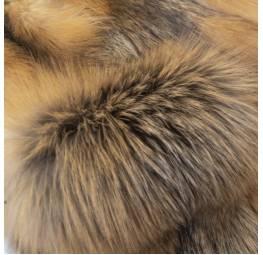 Лисица-крестовка дикая