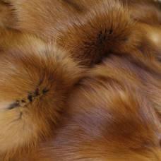 Лисица-огневка Вятская